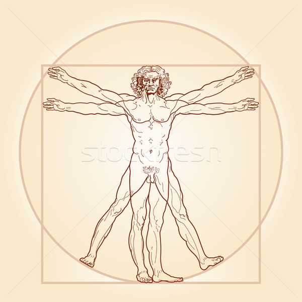 The Vitruvian man (Homo vitruviano) Stock photo © Glasaigh