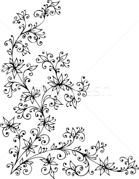 Barokowy wzór obracać dekoracyjny ramki piękna Zdjęcia stock © Glasaigh