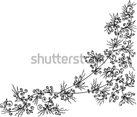 Refined Floral vignette CCXC Stock photo © Glasaigh