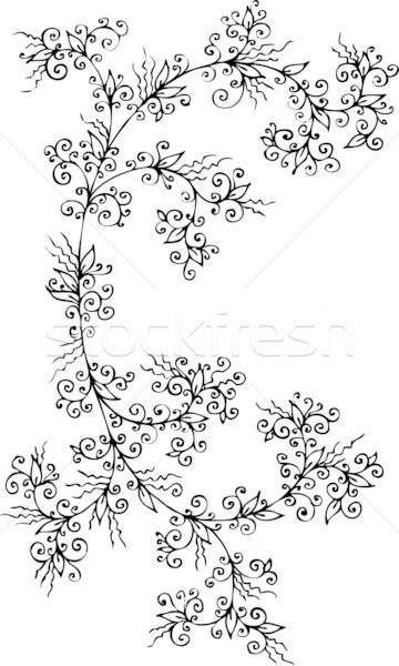 Refined Floral vignette CCXCI Stock photo © Glasaigh