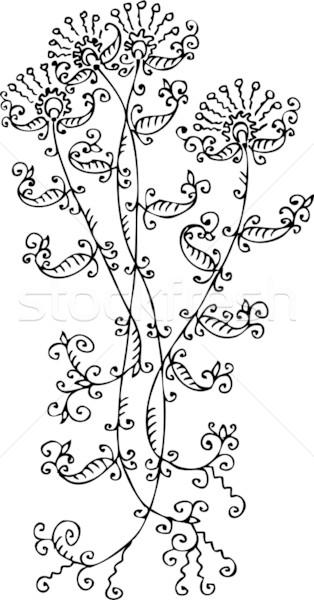 Floral vignette CCXXVIII Stock photo © Glasaigh