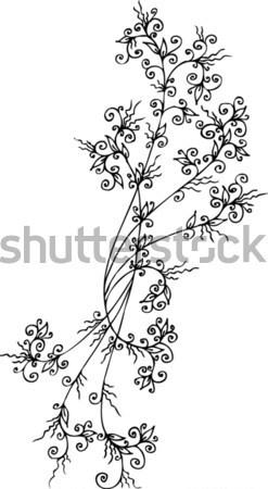 Refinado floral decorativo textura eps8 projeto Foto stock © Glasaigh