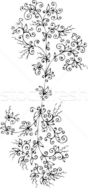 Refined Floral vignette CCLXXXIX Stock photo © Glasaigh