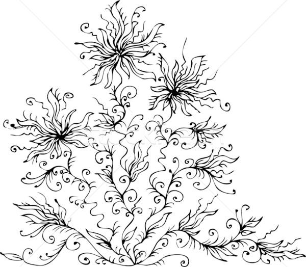 19 floral refinado eps8 quadro beleza Foto stock © Glasaigh
