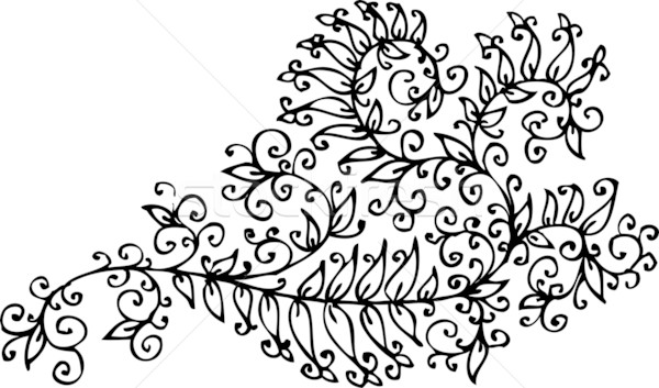 Barok patroon decoratief eps8 frame schoonheid Stockfoto © Glasaigh