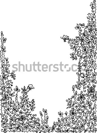 Refined Floral vignette II Stock photo © Glasaigh