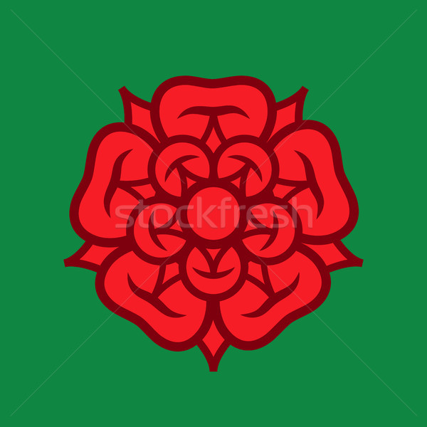 Rose (Queen of flowers); emblem of love, beauty and perfection. Stock photo © Glasaigh