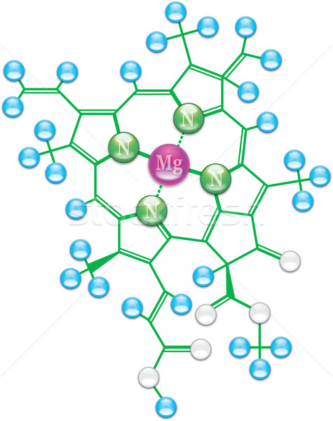Clorofila fórmula químico ilustração eps10 natureza Foto stock © Glasaigh
