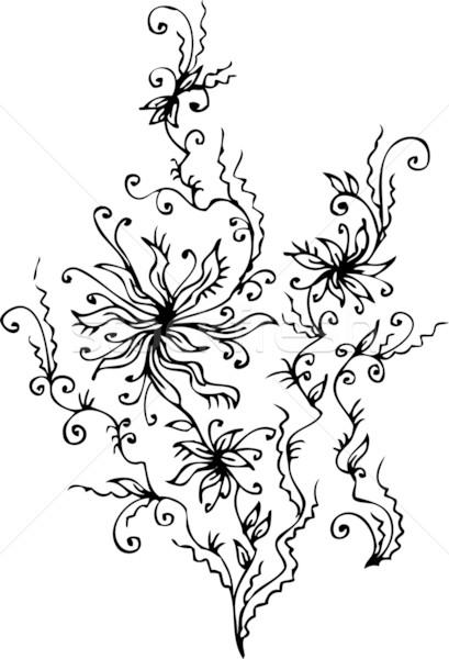 Floral refinado eps8 quadro beleza branco Foto stock © Glasaigh