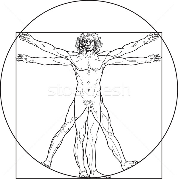 The Vitruvian man (Outline version) Stock photo © Glasaigh