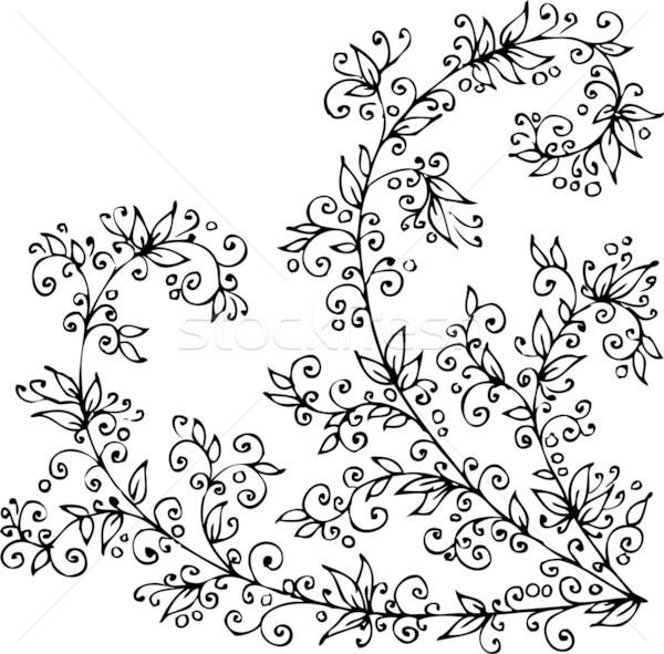 Floral vignette CCCIV Stock photo © Glasaigh