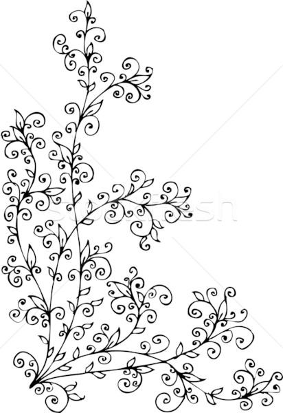 Floral vignette CCCX Stock photo © Glasaigh