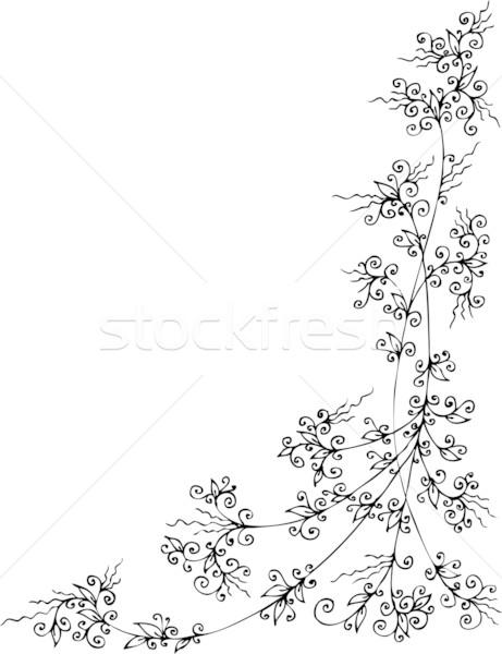 Refined Floral vignette CCLXXXVII Stock photo © Glasaigh