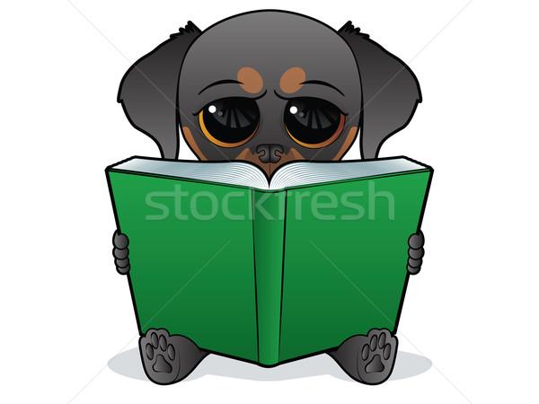 犬 図書 子犬 文字 読む ビッグ ストックフォト © gleighly