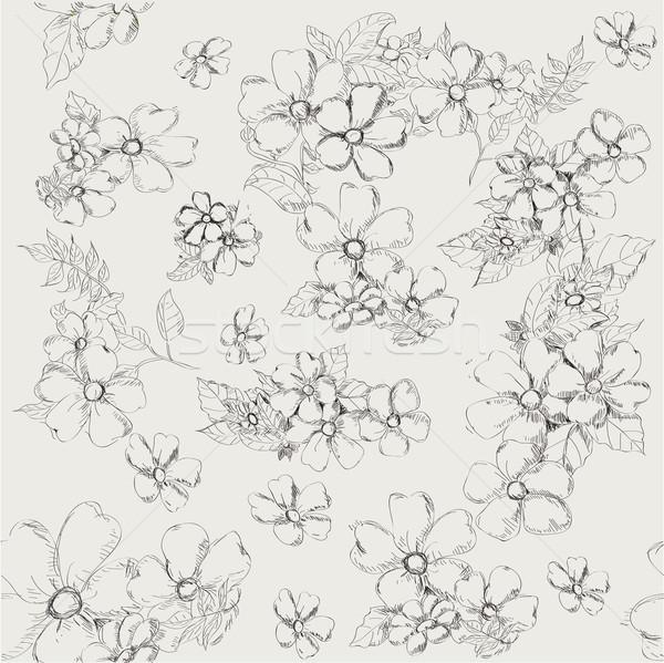 Végtelen minta dekoratív pipacs virágok szürke klasszikus Stock fotó © Glenofobiya