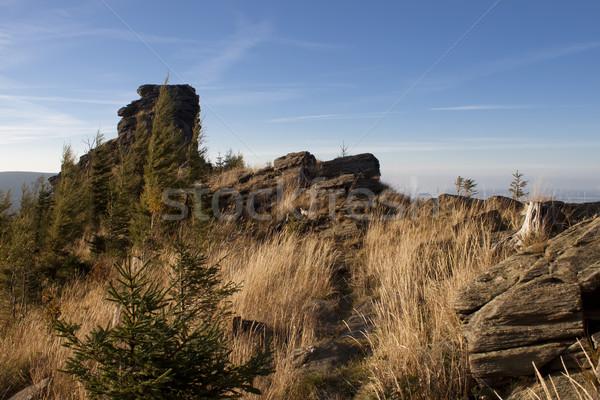 nature with crag Stock photo © glorcza