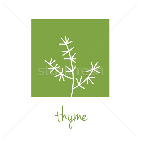 thyme icon on green square Stock photo © glorcza