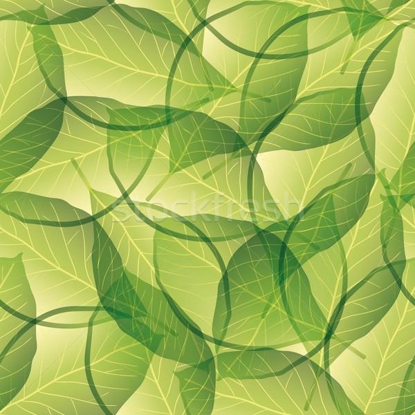 Levél végtelen minta terv művészet zöld levelek Stock fotó © glorcza
