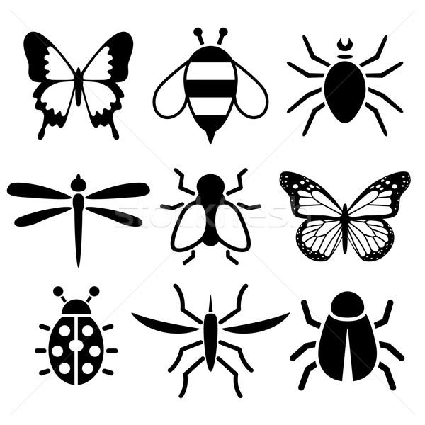 Insetto raccolta natura design ape informazioni Foto d'archivio © glorcza