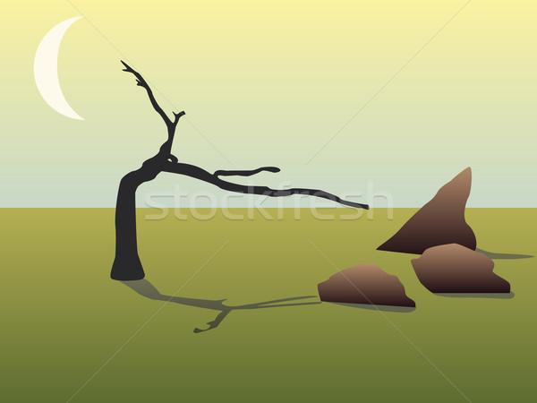 枯れ木 ブラウン 岩 月 空 抽象的な ストックフォト © glorcza