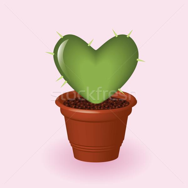Szív kaktusz virágcserép szeretet zöld házasság Stock fotó © glorcza