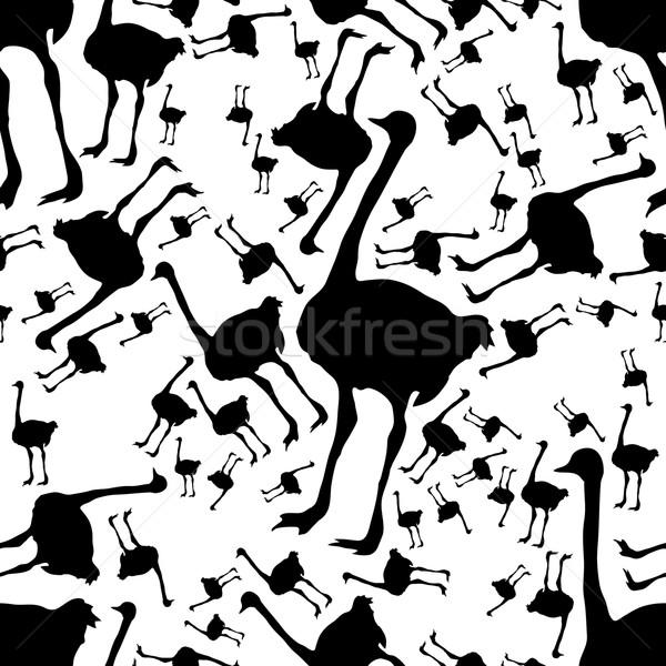 ダチョウ デザイン 鳥 ファブリック パターン ストックフォト © glorcza