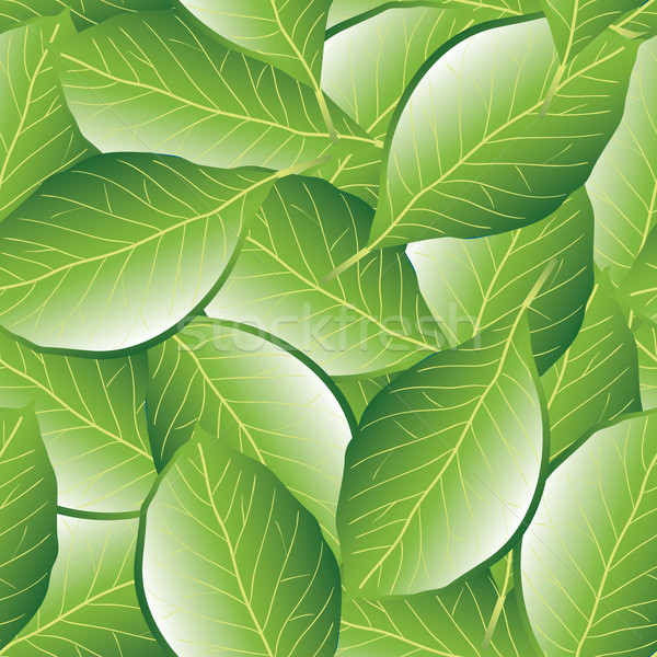 leaf seamless pattern Stock photo © glorcza