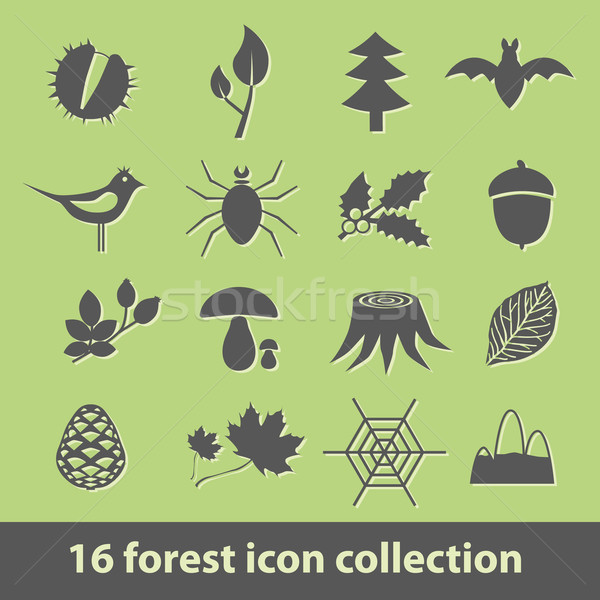forest icons Stock photo © glorcza