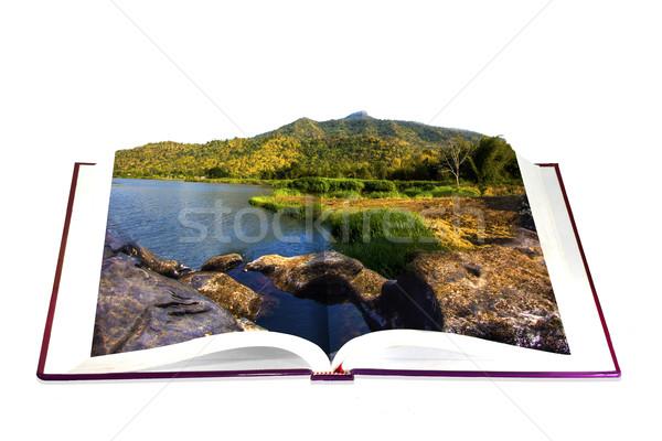 Livro aberto rio montanha céu papel grama Foto stock © Gloszilla