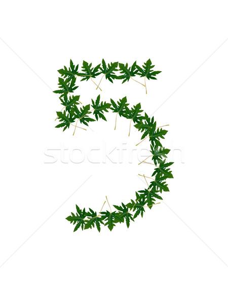 番号 緑の葉 ツリー 草 学校 自然 ストックフォト © Gloszilla