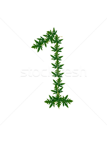 Number 1 of green leaves Stock photo © Gloszilla