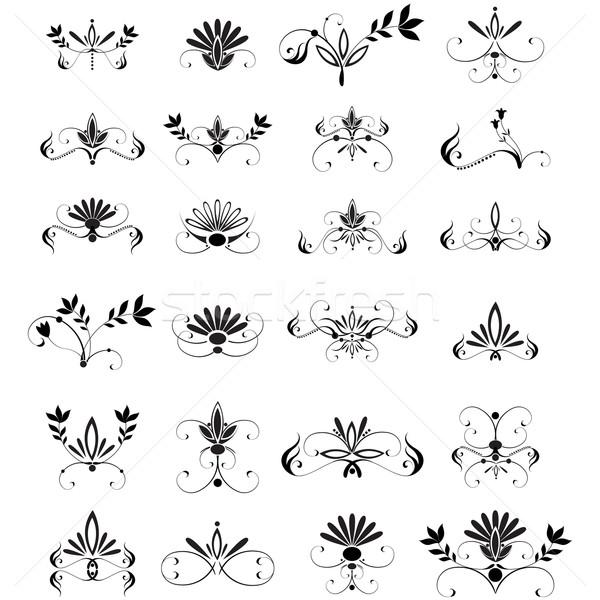 Large set of floral design elements Stock photo © glyph
