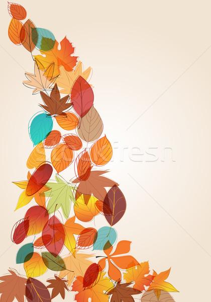 Színes őszi levelek illusztráció vektor aranyos kézzel rajzolt Stock fotó © glyph