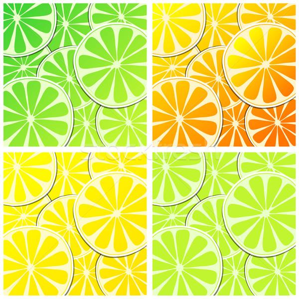 Ingesteld citrus fruit illustraties vector citroen oranje Stockfoto © glyph