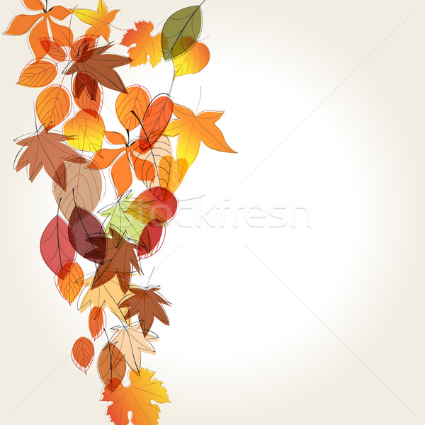Colorful autumn leaves illustration Stock photo © glyph