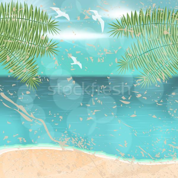 Gyönyörű klasszikus nyár vízpart illusztráció vektor Stock fotó © glyph