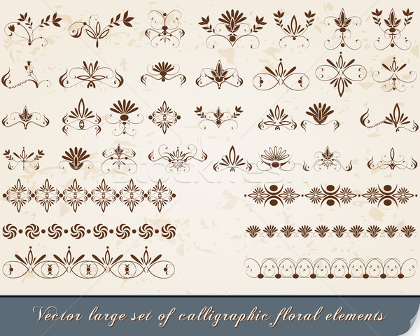 Set of vintage, floral calligraphic design elements Stock photo © glyph