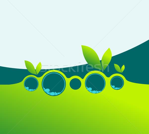 Elegante voorjaar business vector groene Stockfoto © glyph