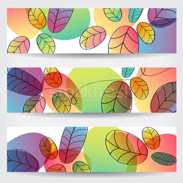 Színes őszi levelek bannerek vektor szett kézzel rajzolt Stock fotó © glyph