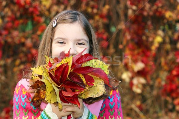 ストックフォト: 女の子 · カラフル · 紅葉 · 少女 · 子