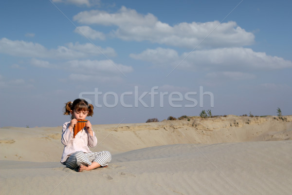 little girl play music on pan pipe Stock photo © goce
