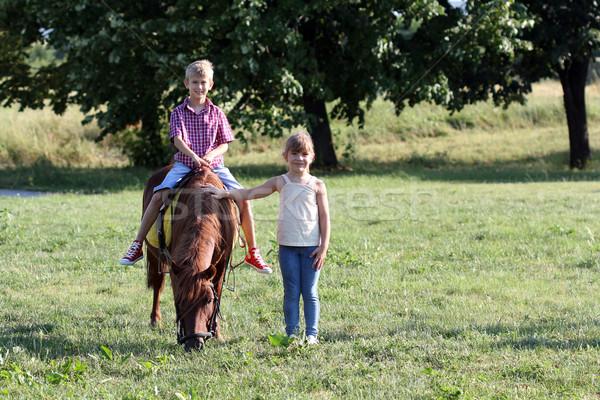Ragazzo bambina pony cavallo pet ragazza Foto d'archivio © goce