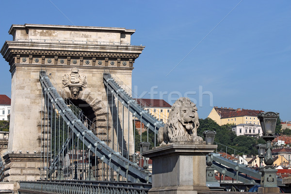 lion statue chain bridge Budapest Stock photo © goce