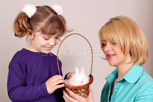 Figlia madre nano bianco coniglio pet Foto d'archivio © goce