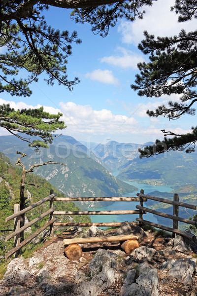viewpoint Banjska stena Tara mountain landscape Stock photo © goce