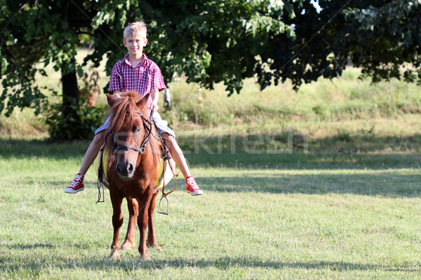 Stock photo: boy riding pony horse in park