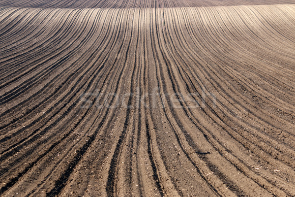plowed field nature background agriculture Stock photo © goce
