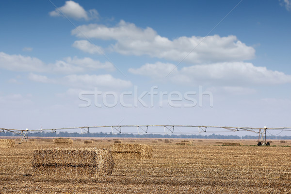 field with straw bale and center pivot sprinkler system Stock photo © goce