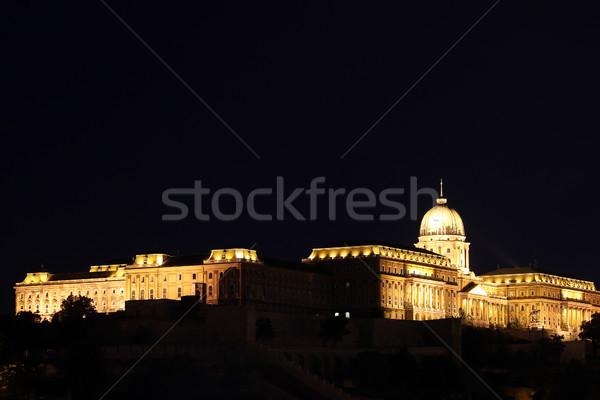 Stock photo: Budapest Royal castle by night