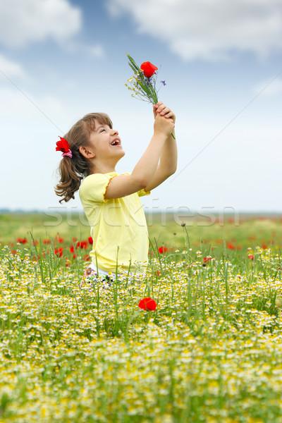 Boldog kislány vadvirágok legelő égbolt virágok Stock fotó © goce